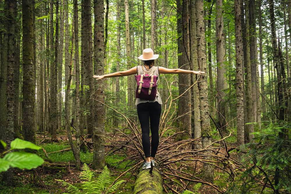 Woman in forest nature in vacation. Woman in nature. Green forest nature. Vacation. Natural environment. Rainforest nature. Adventure in nature. Nature environment, branches and trees. Travel in nature.